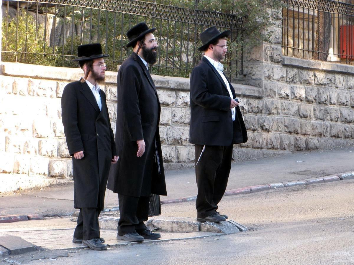 изменения нравятся евреи мужчины фото особенности выращивания обычный жаркий летний