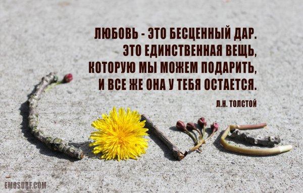 любовь это прекрасное цитаты великих людей яркие