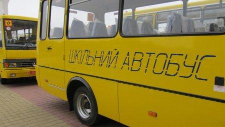 В Киевской области из-за неисправного школьного автобуса дети пропускают уроки (ТВ, видео)