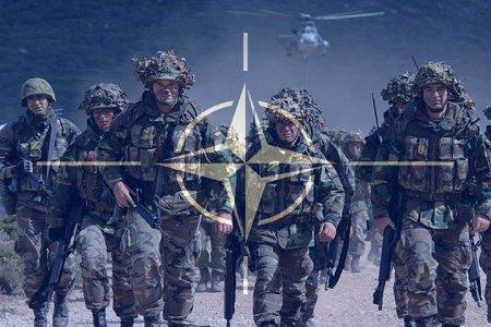 Муженко и Ко открыто препятствуют сотрудничеству Украины С НАТО - Юрий Бутусов