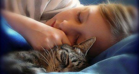 Сколько нужно спать, чтобы быть здоровым?