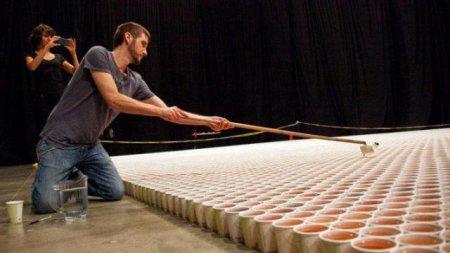 Канадский художник создал самую большую в мире мозаику из дождевой воды. ФОТО