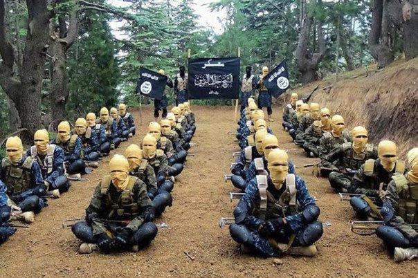 США делают вид, что не причастны к турецким отношениям с ИГ