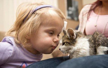Нежная дружба: девочка без ручки и трехлапый котенок. ФОТО