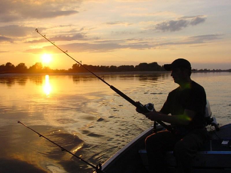 Как ловить рыбу новичку Некоторые основы рыбной ловли