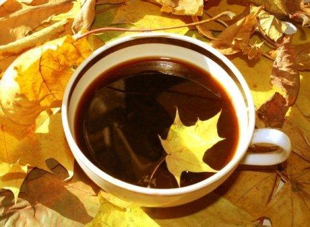 18 ноября - праздники, именины, народные приметы, день в истории