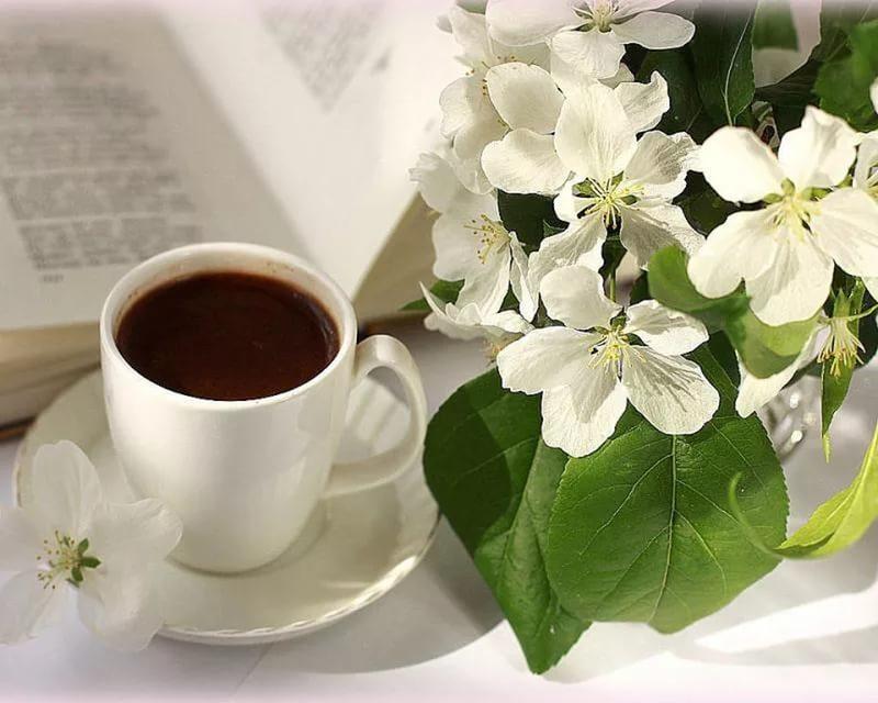 Фото словами, открытки с весенним утром с кофе