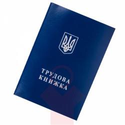 Трудовые книжки украинцев станут электронными